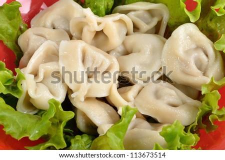 dumplings on the dish - stock photo