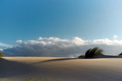 Dune at sunset against blue sky with Stratus clouds. Minimalist natural landscape. Panoramic view of the Valdevaqueros dune in Tarifa coast, Cadiz, Andalusia, Spain