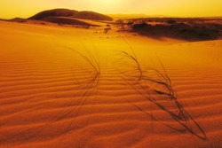 Dune at the sunset, Russia, Dagestan