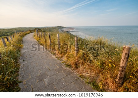 Dune, beach and sea in the Netherlands on a sunny day in spring. - Shutterstock ID 1019178946