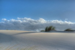 Dune grass at Famous Tarifa coast. White sand dune with Ammophila grass against blue sky with Stratus clouds. Minimalistic natural landscape. Dune of Valdevaqueros inlet, Cadiz coast, Andalusia, Spain