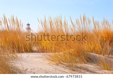 Dune grasses with lighthouse in distance