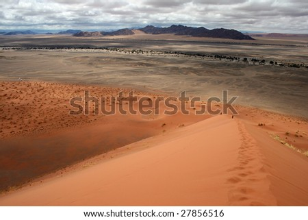 Dune in the Namib Desert.Namibia