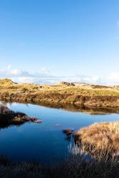 Dune landscape in Bergen aan Zee, Noord-Holland, The Netherlands, Europe