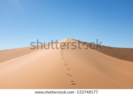 Dune with Footsteps in the Desert #533748577