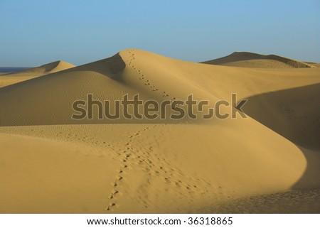 dunes 11