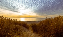 Dunes and beach at sunset on the Baltic Sea in the Kaliningrad region