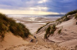 Dunes at the Beach of Amrum, Germany in  Europe