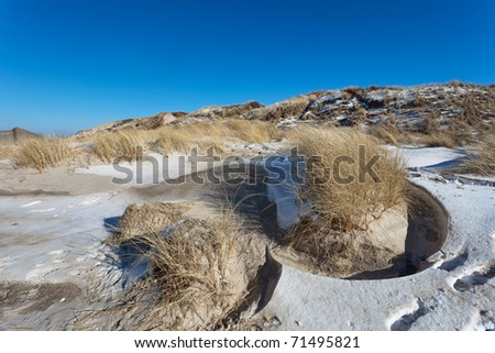 Dunes at the Danish North Sea coast at the beach of Blaavand
