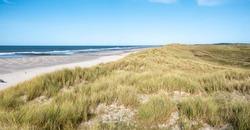 Dunes, beach and breakwaters at North Sea coastline of West Frisian island Vlieland, Friesland, Netherlands