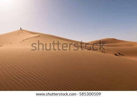 Dunes Erg Chebbi desert, Sahara, Merzouga, Morocco
