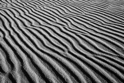 Dunes in slowinski national park