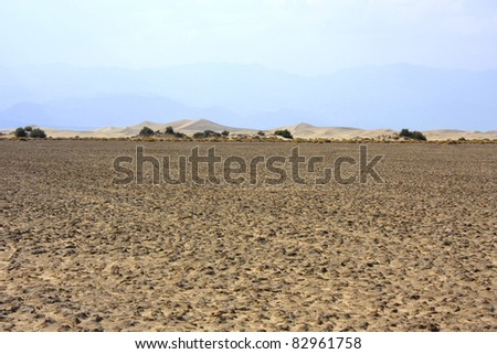 Dunes in the background of a desert landscape