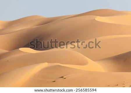 Dunes in the Empty Quarter desert. Emirate of Abu Dhabi, United Arab Emirates