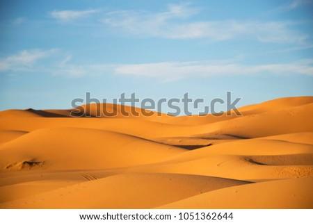 Dunes in the sahara, merzouga morocco. Golden desert dunes. Hills of the sahara. Evening in the desert. Lanscape morocco. Scenic view.