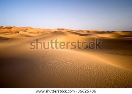 Dunes of Sahara desert during the sunset, Morocco - stock photo