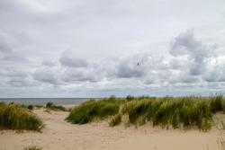 Dunes of Texel National Park landscape, Frisian Islands