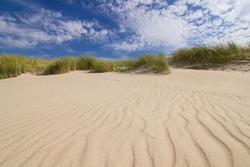 Dunes on a beach in Leba, Poland