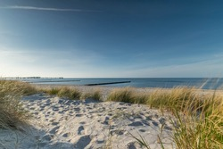 Dunes on the beach of the Baltic Sea near Heiligenhafen, Schleswig-Holstein, Germany, Dune landscape on the beach of the Baltic Sea