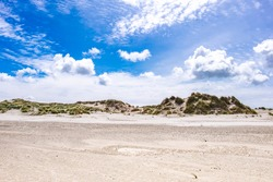 Dunes on the  Frisian Island Terschelling, The Netherlands, Europe.