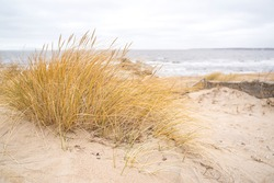 Dunes on the North Sea, Sweden