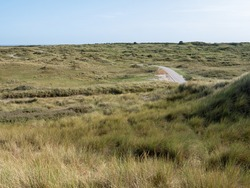 Dunes with bicycle path and marram grass in nature reserve of West Frisian island Vlieland, Friesland, Netherlands