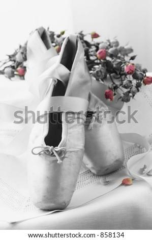 Duo Tone Ballet Toe Shoes