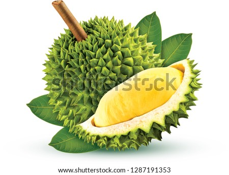 Durian isolated from white background