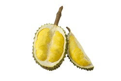Durian, Thorny golden fresh smelly southeast fruit with sharp thorn, yellow and sweet, on isolated white background. This tropical exotic king fruit very famous in Thailand and Malaysia.