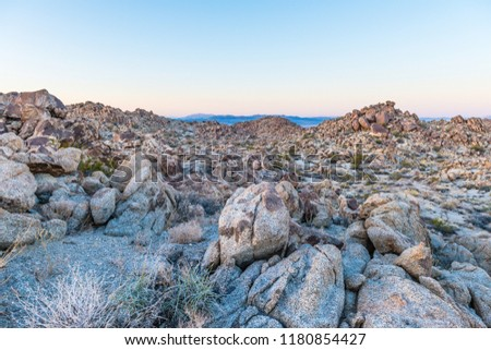 Dusk in the Porcupine Wash wilderness area in Joshua Tree National Park, California #1180854427