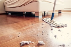 Dust and dirt on a wooden floor in bedroom.