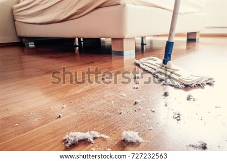 Dust and dirt on a wooden floor in bedroom. #727232563