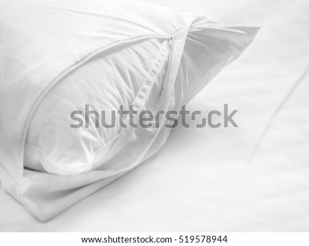 Dust mites pillow and bedding cover. #519578944