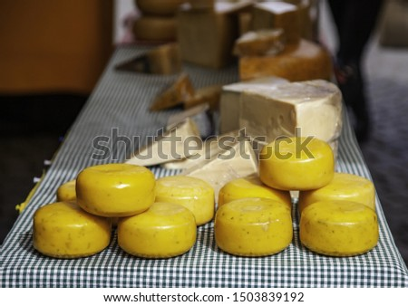 Dutch artisan cheeses, dairy product detail, fatty food