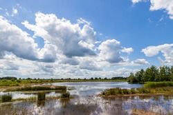 Dutch countryside, beautiful lake in a forest, shot made in Drenthe, The Netherlands