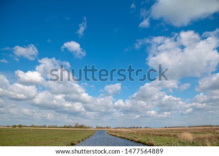 Dutch countryside landscape with meadow and white fluffy cumulus clouds on the blue sky, Small canal going through the pastures of green grass on the field, Netherlands. #1477564889