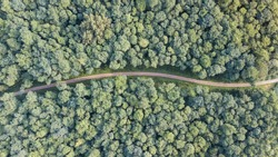 Dutch landscape drone shots. Aerial footage of the green hart of the Netherlands