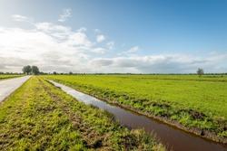 Dutch landscape photo taken against the sunlight. Large meadows and a recently cleaned ditch with clouds reflected in the water surface. It is autumn in the Alblasserwaard region in South Holland.