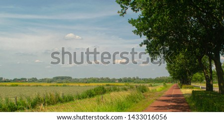 Dutch meadow panoramic landscape. Cobblestone road going through the pastures or green juice grass. Beautiful trees standing next to road in the Netherlands. Remembering the Europe travel #1433016056