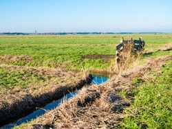 Dutch polder landscape with drainage ditch and gate to meadows and farmland in polder Eempolder near Eemnes, Netherlands