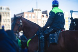 Dutch police squad formation and horseback riding mounted police back view with