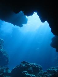 Dynamic undersea-scape scuba diving in Okinawa-Aguni island