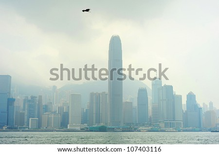 Eagle flying above the Hong Kong skyscrapers