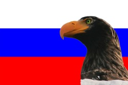 Eagle on Russian flag background