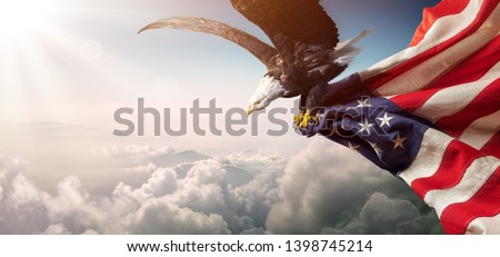 Photo of  Eagle With American Flag Flies In Freedom