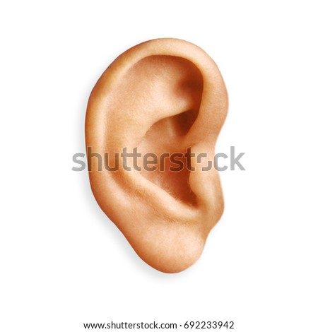 ear isolated #692233942
