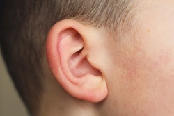 Ear of child. The boys ear.