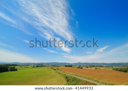 early autumn landscape with cloudy sky and buckwheat field in Biei, hokkaido, japan
