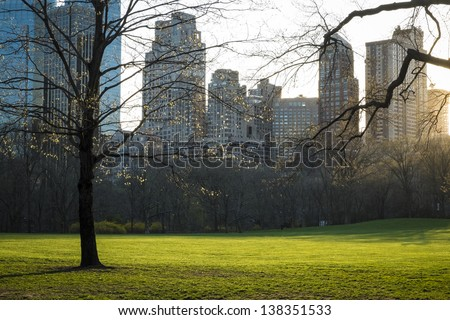 Early evening light in Central Park, New York City