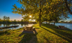 Early fall evening, sunset, picnic area in MacDonald Beach Park on the banks of  Fraser River. Picnic tables  located  by the shore under deciduous deciduous trees  sun sheds its rays between leaves